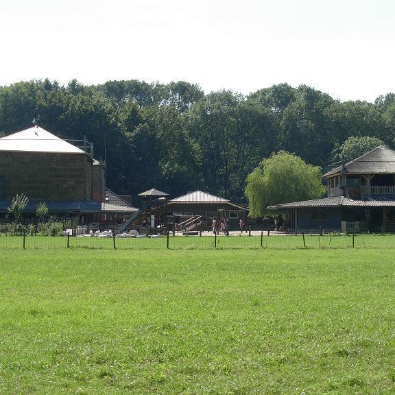 amsterdamse bos geitenboerderij