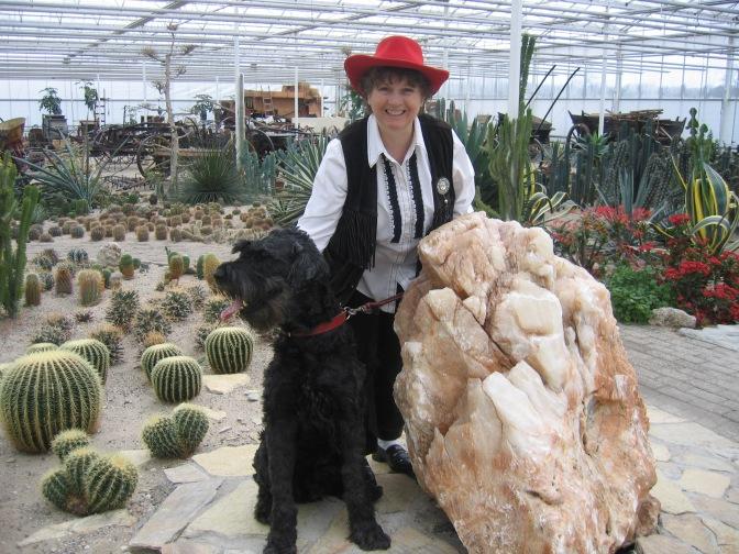 Cactus Oase in Ruurlo