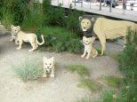 legoland leeuwen