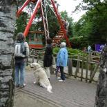 avonturenpark hellendoorn hond mag mee
