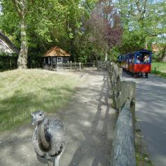 plaswijckpark19