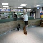 Landal Twenhaarsveld hondenbungalow