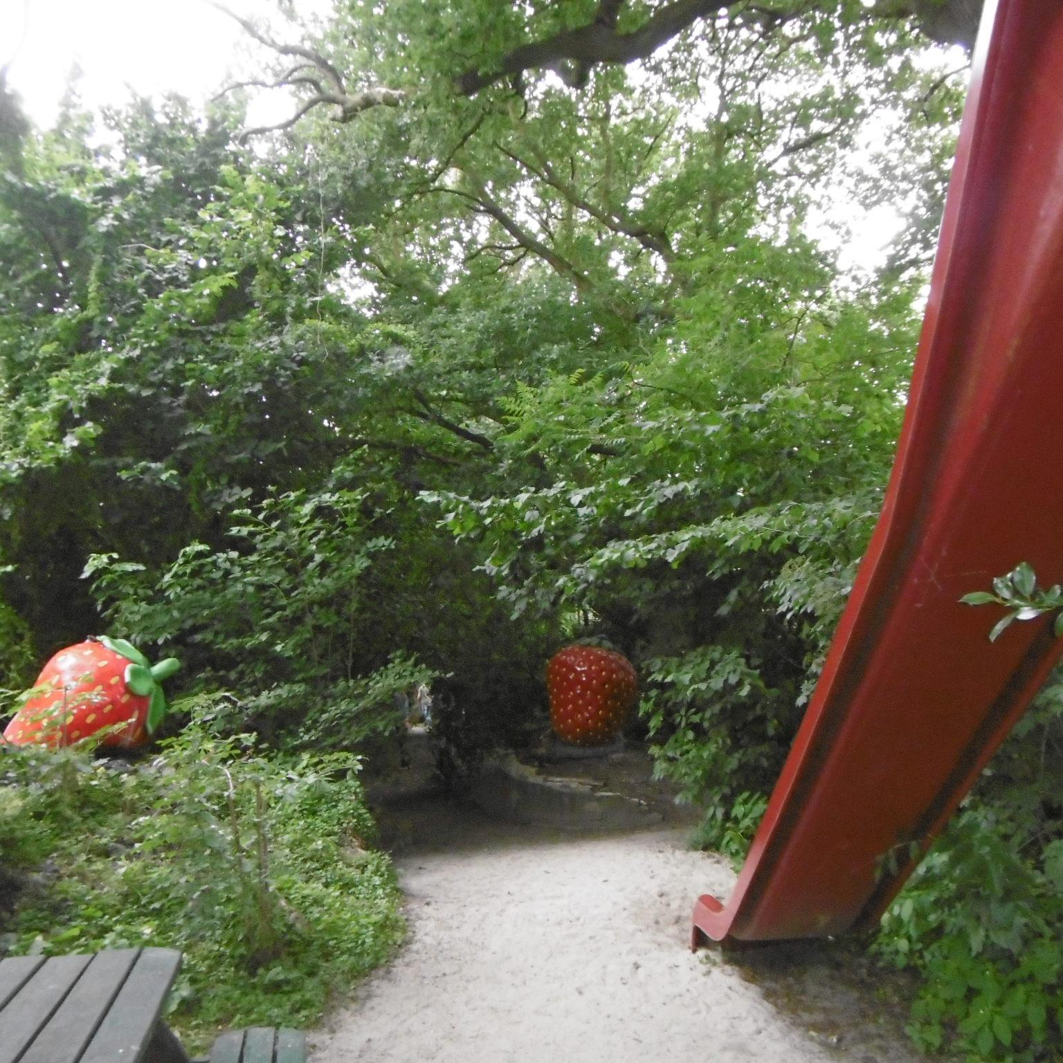 aardbeienland limburg