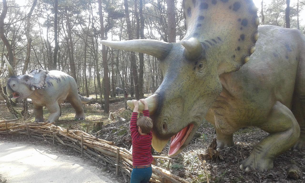 dinobos 3 amersfoort dierenpark