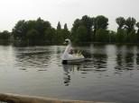 plaswijckpark8