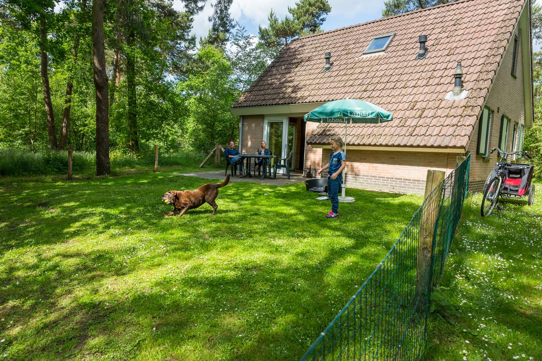 landal hondenbungalow