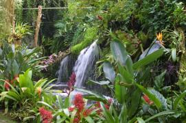 De Orchideeën Hoeve (3)