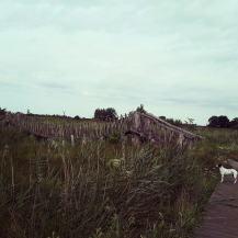 wandelgebied plateaux natuurmonumenten