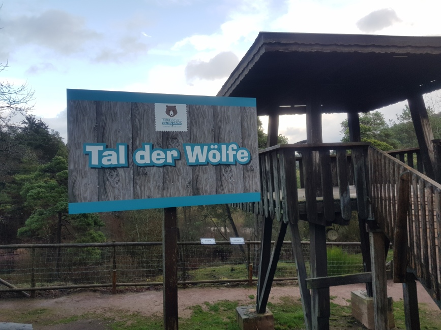 wolven dal in het Eifelpark