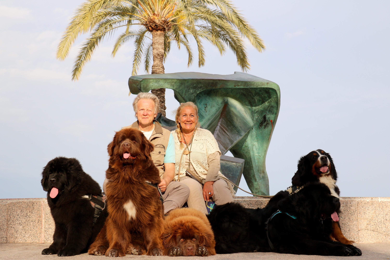 familie met honden