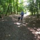 viervoetervriendelijk wandel app