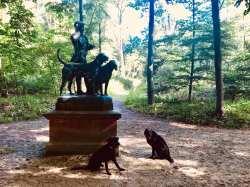viervoetervriendelijk standbeeld hond