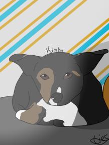 Lies Pet Drawing