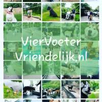 Over VierVoeterVriendelijk.nl 🐕
