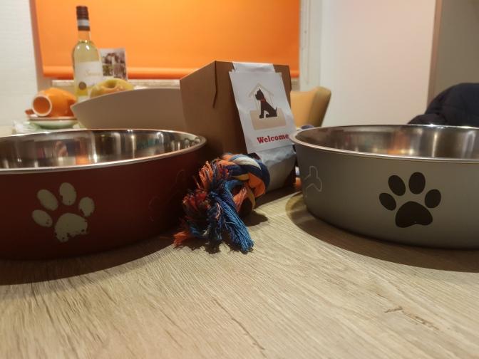 Hondenbungalow Landal Wirfttal