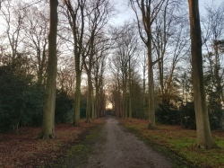 warmond park zuid holland