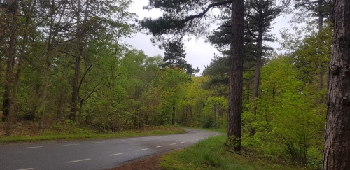 nationaal park texel