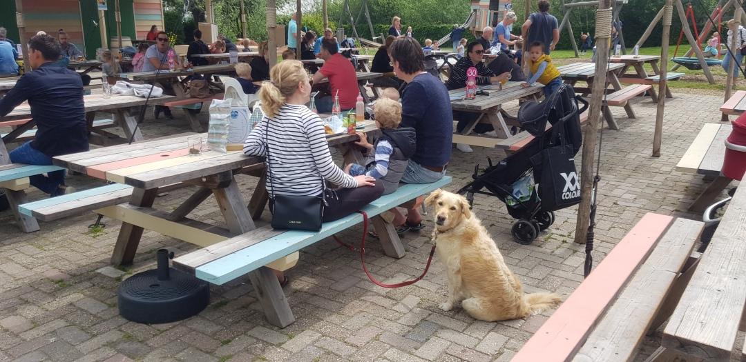gezin met hond Avonturenboerderij Molenwaard