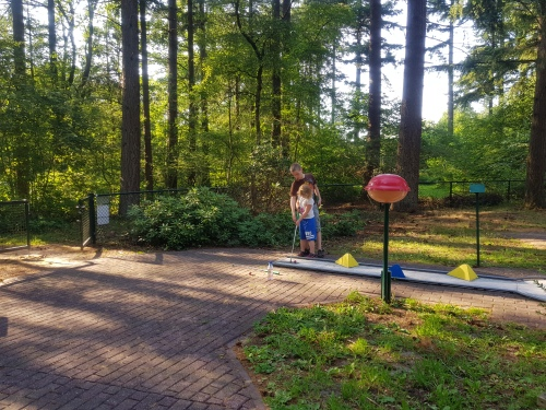 RCN De Roggeberg hond mee op vakantie