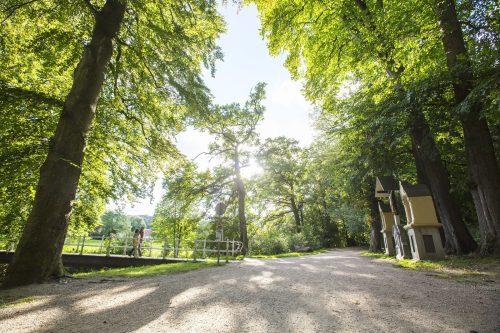 residence valkenburg  viervoetervriendelijk