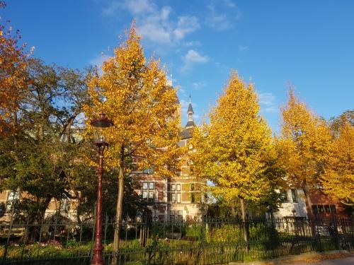Amsterdam in herfstkleuren