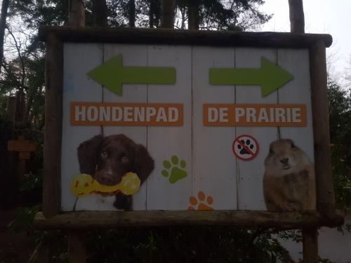 Dierenpark Amersfoort dagje weg hond mee